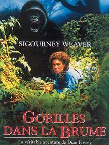 Les gorilles dans la brume. Le film.