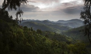 Montagnes du Virunga